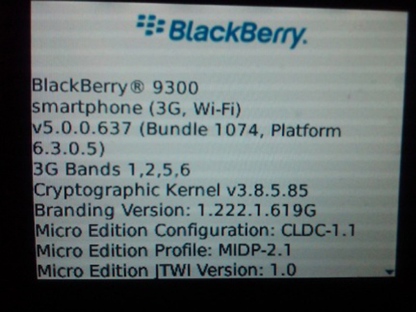 blackberry93002